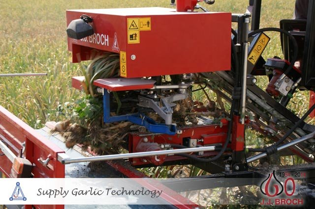 Usa Garlic Machinery Garlic Harvest Post Harvest Machines